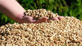 Foto de El 85% de la producción nacional de pellet cuenta con el sello de calidad ENplus que gestiona Avebiom