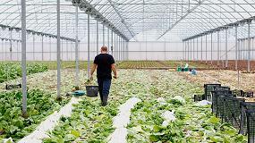 Foto de UPA cuestiona que los trabajadores hortofrutícolas pasen revisiones médicas con cada contratación
