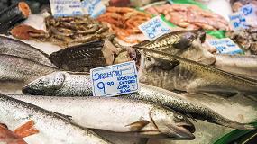 Foto de Trazabilidad y etiquetado inteligente para productos del mar