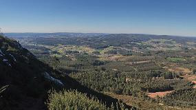 """Foto de """"Hay que dar certeza y estabilidad a la propiedad forestal"""""""