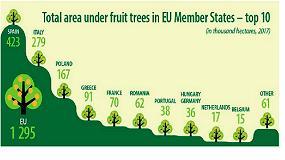 Foto de España, primer país europeo en plantaciónes frutales