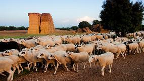 Foto de UPA pide un pacto sobre la PAC a favor de la agricultura familiar y contra el despoblamiento
