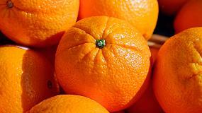Foto de Denuncian que Sudáfrica utiliza en sus naranjas materias activas de pesticidas prohibidas en la UE