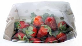 Foto de Itene aplica con éxito compuestos volátiles en envases para aumentar la vida útil de la fruta