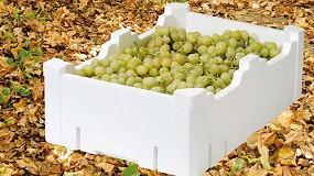 Foto de Alargar la vida de la fruta con envases EPS, la propuesta de Knauf Industries en Postcosecha