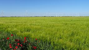 Foto de La Agricultura de Conservación reivindica su papel en el Día Mundial del Medio Ambiente