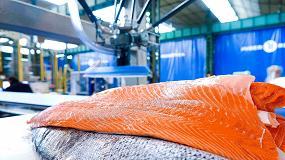 Foto de Algoritmos de inteligencia artificial para la clasificación de peces