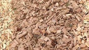 Fotografia de Andalucía lidera el sector de la biomasa de calefacción