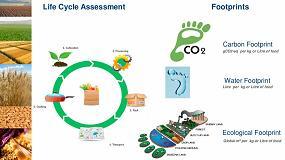 Foto de BSF, ejemplo de sostenibilidad en la cadena de suministro agrícola