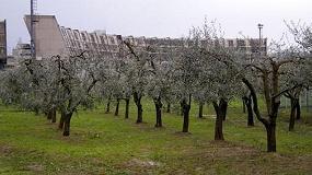 Foto de En los centros penitenciarios italianos se elabora AOVE