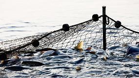 Foto de Anfaco-Cecopesca avanza en la revalorización de subproductos pesqueros