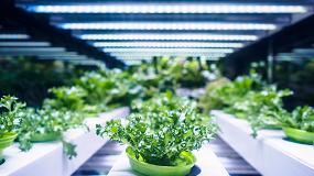 Foto de Inelec, partners de las mejores marcas en el sector de la iluminación LED
