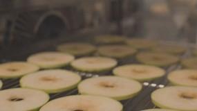 Foto de Crean un snack de fruta dulce saludable, de larga duración y mínimamente procesado