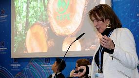 Foto de Empresas de comunidades forestales: nuevos modelos para la adaptación y mitigación