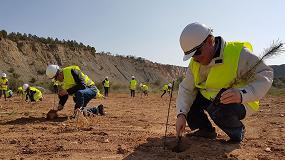 Foto de Las Canteras y Minas se comprometen por el clima con una plantación voluntaria de 60.000 árboles