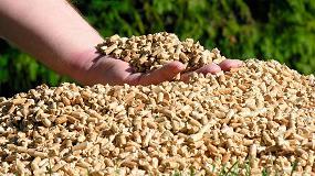 Foto de Impulso de las comunidades autónomas a la biomasa en 2020