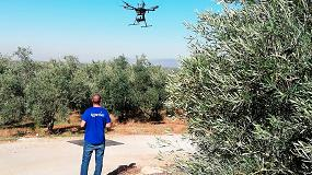 Foto de Resultados del Grupo Operativo de Agricultura de Precisión con Drones Aplicado al Olivar