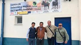 Foto de La raza Murciano-Granadina llega a Brasil con la exportación de 1.200 dosis seminales