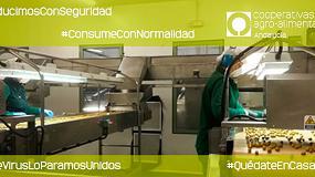 Foto de Cooperativas Andalucía lanza la campaña 'Producimos con seguridad, consume con normalidad'