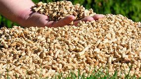 Foto de El sector de la biomasa sigue trabajando para llevar la energía a la población
