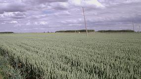 Foto de INTIA permite el acceso libre a la plataforma AGROasesor para el seguimiento de cultivos
