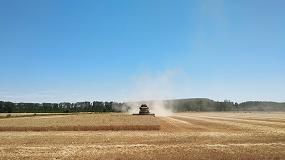 Foto de La cosecha de cereal en secano puede crecer un 20% en Extremadura