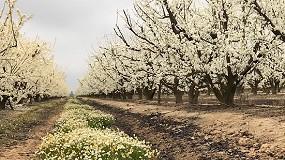 Foto de Syngenta aboga por una agricultura productiva y rentable fomentando la biodiversidad