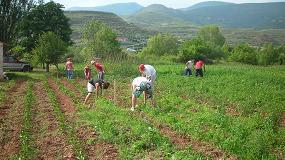 Foto de Prorrogadas hasta el 30-09 las medidas extraordinarias para promover el empleo temporal agrario