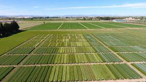 Foto de Agricultura digital y formación, las claves para superar los desafíos que amenazan al campo español