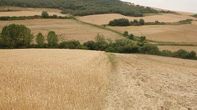 Foto de COAG dice que la agricultura española se juega más de 45.000 M€ en el marco financiero 2021-2027