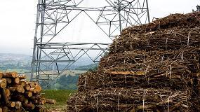 Foto de La generación eléctrica con biomasa en la transición energética española