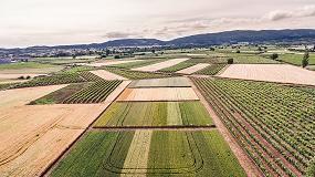 Foto de ARAG-ASAJA difunde el potencial de las nuevas variedades de cereal en La Rioja