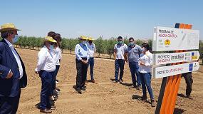 Foto de Planas visita una plantación de olivar intensivo donde comprueba el avance de la I+D+i en el sector
