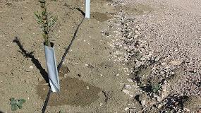 Foto de La aplicación de aguas regeneradas es viable en el cultivo del olivar