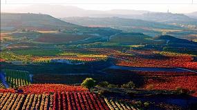 Foto de Rioja se moviliza para abortar el intento de creación de un Consejo Regulador propio para 'Rioja Alavesa'