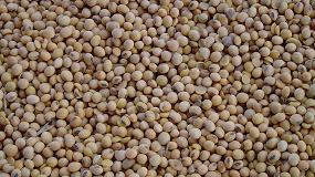Foto de CESFAC trazará el mapa de la soja sostenible en España