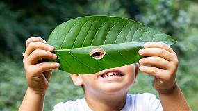 Foto de Las compañías farmacéuticas logran reducir más de 178 toneladas de materiales gracias al ecodiseño de los envases