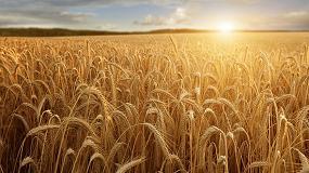 Foto de El futuro del sector agrario: formación y mejora de las condiciones de acceso a la actividad