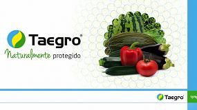 Foto de Syngenta desarrolla un nuevo biofungicida de amplio espectro para cultivos hortícolas