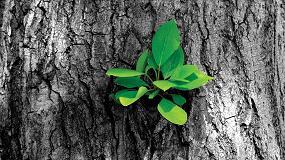 Foto de AkzoNobel se embarca en una serie de proyectos de sostenibilidad