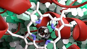 Foto de La empresa Evoenzyme diseña nuevas enzimas aplicables a la obtención de fármacos o al tratamiento de residuos plásticos