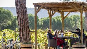 Foto de Ribera del Duero, la Ruta del Vino más premiada en los V Premios de Enoturismo 'Rutas del Vino de España'