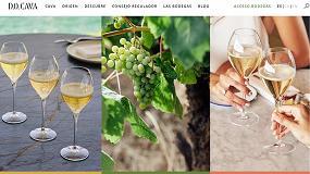 Foto de La DO Cava lanza nueva página web y eleva aún más las calidades del Cava