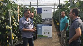 Foto de Timorex Gold, un aliado ante la próxima amenaza de oídio y botritis por lluvias en los cultivos hortícolas