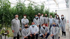 Foto de Tecnova impulsa un proyecto para aumentar la rentabilidad del cultivo de tomate en Almería