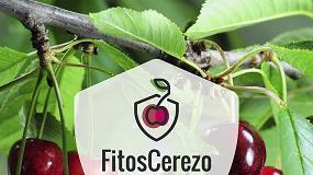 Foto de El GO FITOSCEREZO profundiza en el control integrado de plagas en el cultivo del cerezo
