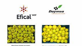 Foto de Daymsa lanza EFICAL, una solución nutricional para hacer frente a las deficiencias de Calcio