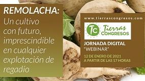 Foto de ACOR y Tierras organizan una jornada digital sobre el cultivo de remolacha azucarera