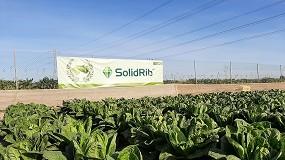 Foto de Syngenta da a conocer la innovación en cultivos de hoja a través de 'Salads Emotion'