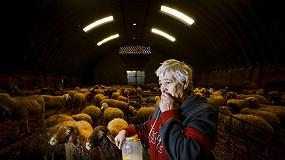 Foto de El 8M en el sector agrario: esfuerzo y trabajo para superar la doble brecha que afecta a las mujeres en el medio rural
